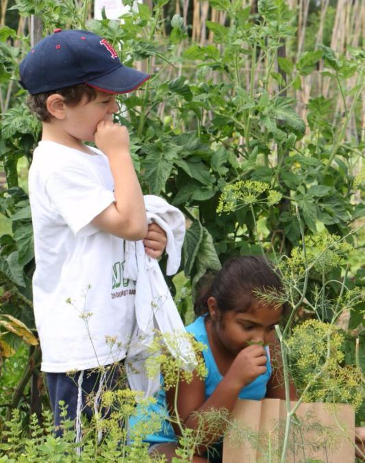 Children at the New York Botanical Garden