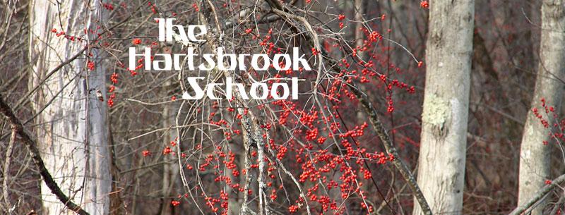 Red berries/trees