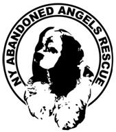 NY Abandoned Angels Rescue
