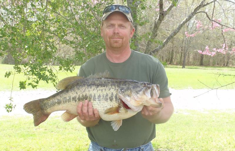 state record bass