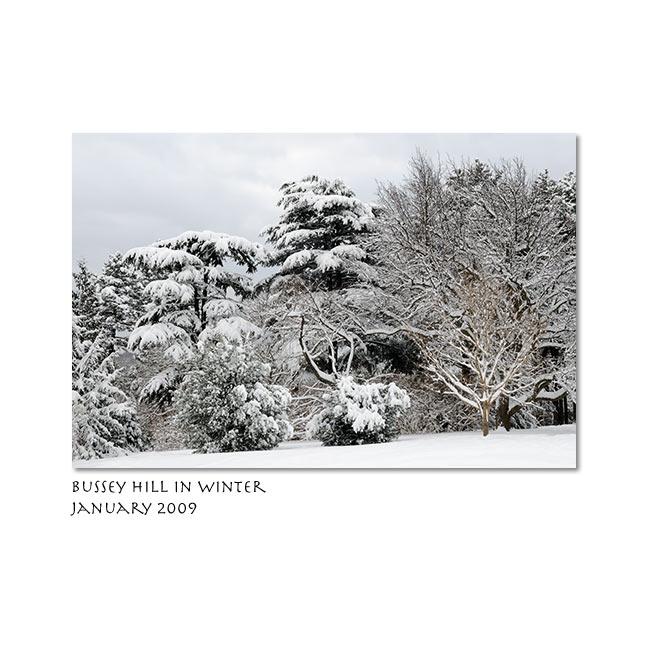 Erik Gehring winter photo
