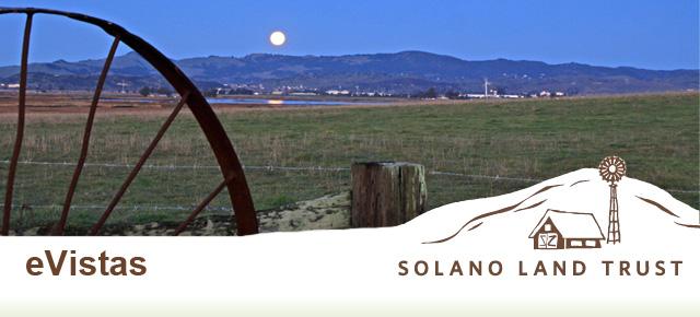 Solano Land Trust-Rush Ranch night