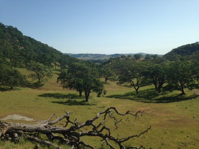Rockville Trails view