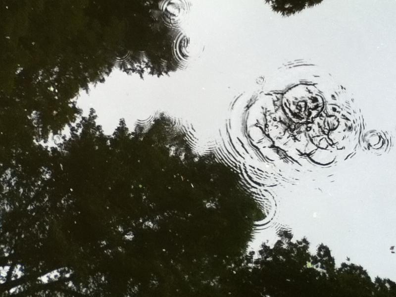 pond ripple