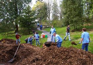volunteers at the arboretum