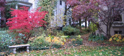 Fall foliage in one of our gardens