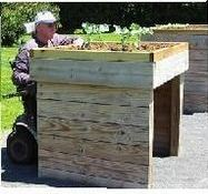 Rich Fabend seated in his wheelchair and working directly in his raised garden bed/box (the chair rolls beneath the box)
