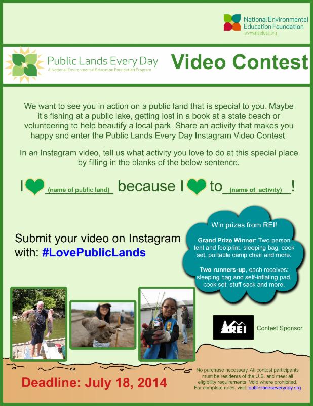 Video Contest Flier