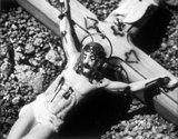 ants on crucifix from wojnarowicz video