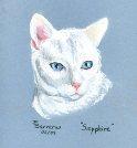 Cat portrait by Trudie Barreras
