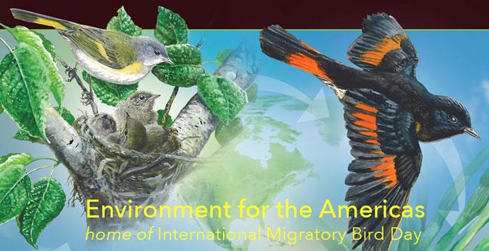 EFTA Newsletter Banner