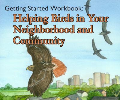 HelpingBirds