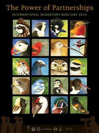 2010 Bird Day Poster