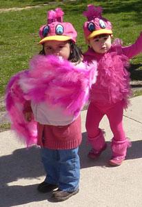 Pink Bird Costumes