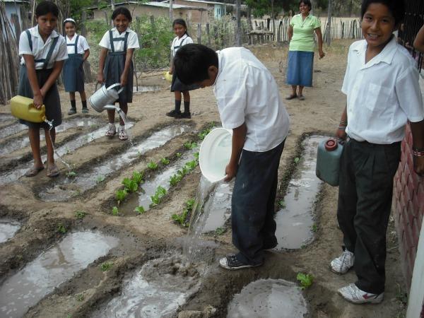 watering garden in Peru
