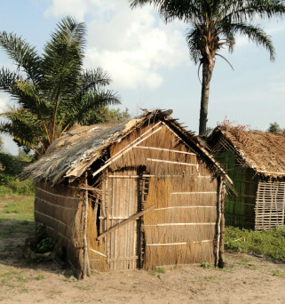 Congolese Houses