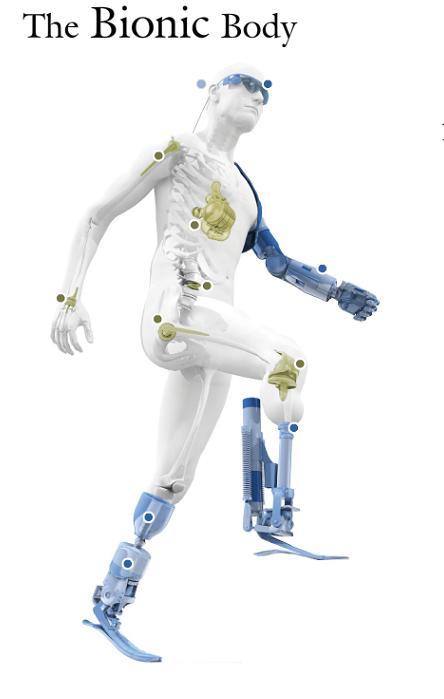 Bionic body
