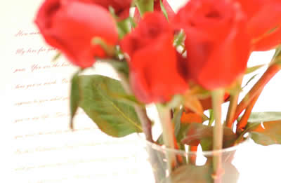 blurred-red-roses.jpg