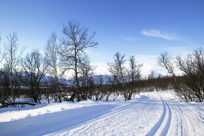 Cross country ski trails in the mountains of Norway.