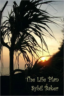 The Life Plan by Sybil Baker