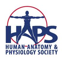 HAPS new logo