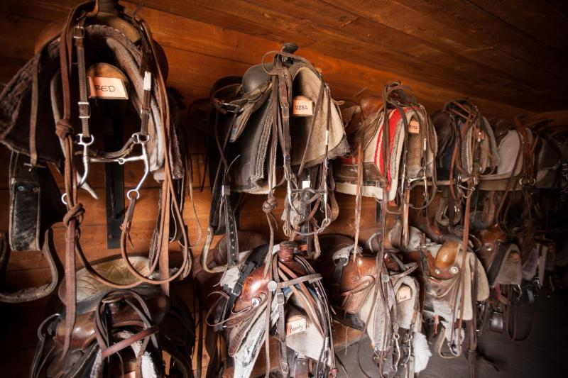 The Flying U Ranch Saddles