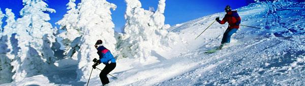 two-skiers-header.jpg