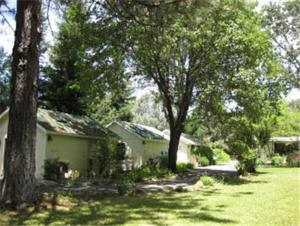 Backyard Garden Oasis