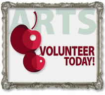 2010 volunteer frame