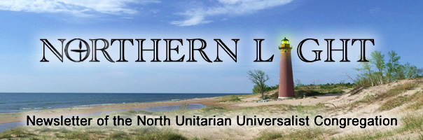 Northern Light Banner
