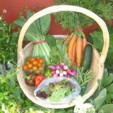 Laguna Fresh Produce