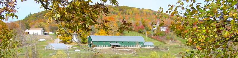 Livestock Farm with green barn