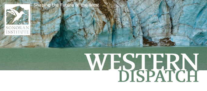 Western Dispatch Banner - Ice Rocks