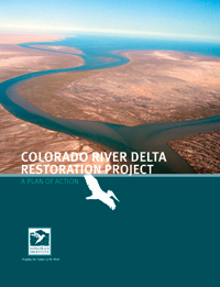 Delta Plan of Action Cover 2011