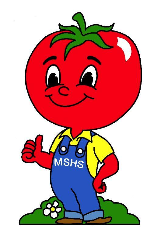 Mr. Tomato Guy