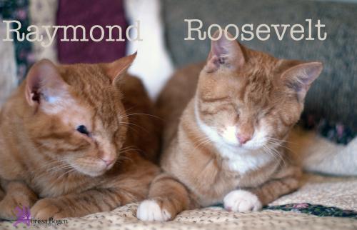 Ray and Roosevelt-Morissa