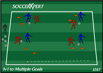 1v1 to Multiple Goals