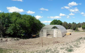 Before Picture of Greenhouse