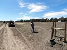Arboles Crop Pasture