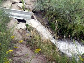 Pond Runoff