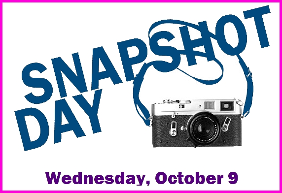 snapshot day