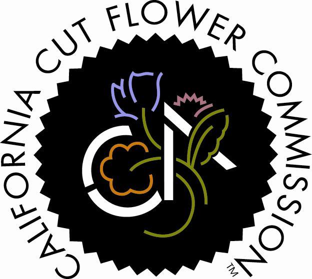 ccfc.org