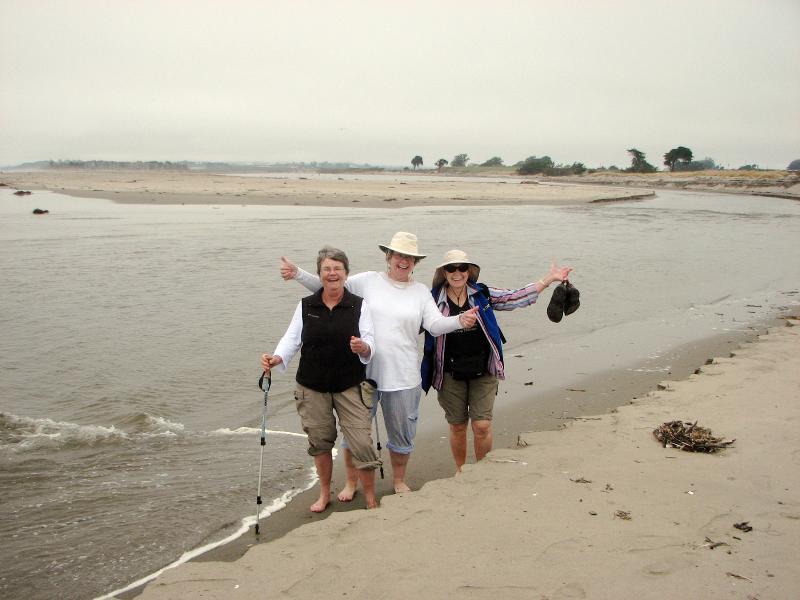 Halsey Group Crossing Pajaro