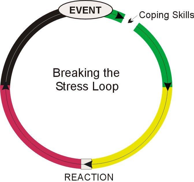 Stress Loop