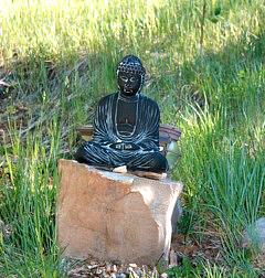 Buddha on rock