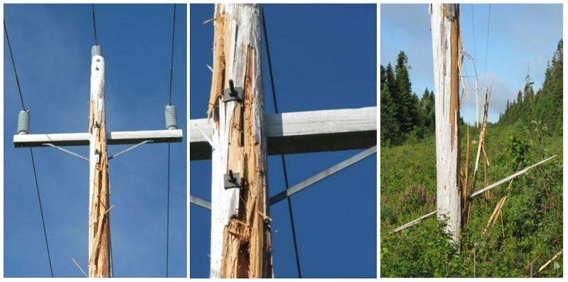 Pole Lightning Damage