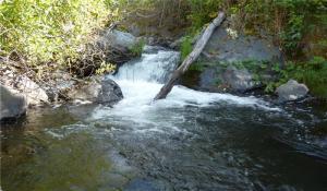 22 Acres Montgomery Creek