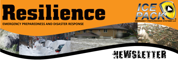 Resilience - header ICE PACK LLC