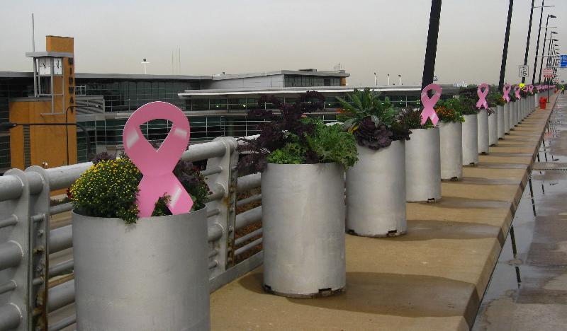 100112_Breast Cancer - MDW