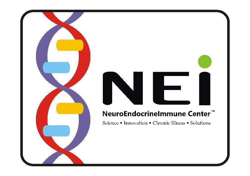NEI logo 2010